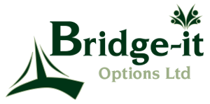 Bridge-IT Options Ltd